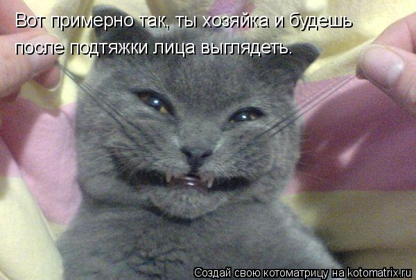 Котоматрица: Вот примерно так, ты хозяйка и будешь  после подтяжки лица выглядеть.