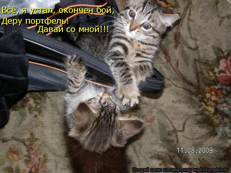 Котоматрица: Всё, я устал, окончен бой,  Деру портфель!  Давай со мной!!!