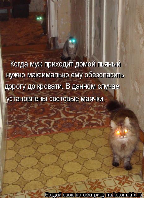 Котоматрица: Когда муж приходит домой пьяный нужно максимально ему обезопасить дорогу до кровати. В данном случае установлены световые маячки.