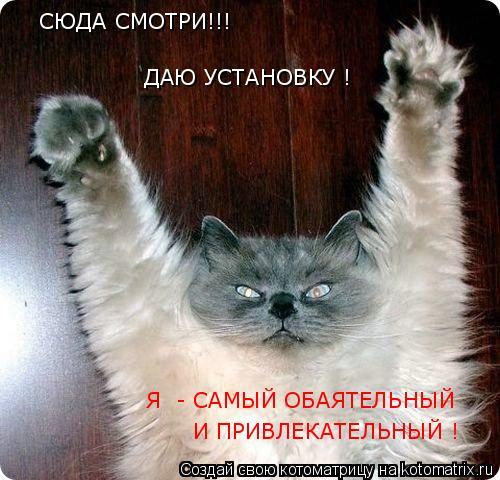 Котоматрица: СЮДА СМОТРИ!!!  ДАЮ УСТАНОВКУ ! Я  - САМЫЙ ОБАЯТЕЛЬНЫЙ  И ПРИВЛЕКАТЕЛЬНЫЙ !