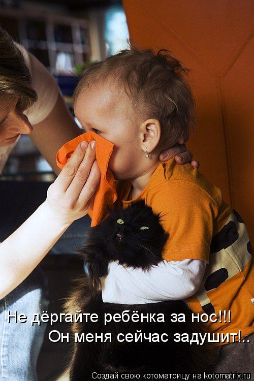 Котоматрица: Не дёргайте ребёнка за нос!!! Он меня сейчас задушит!..
