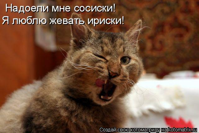 Котоматрица: Надоели мне сосиски! Я люблю жевать ириски!