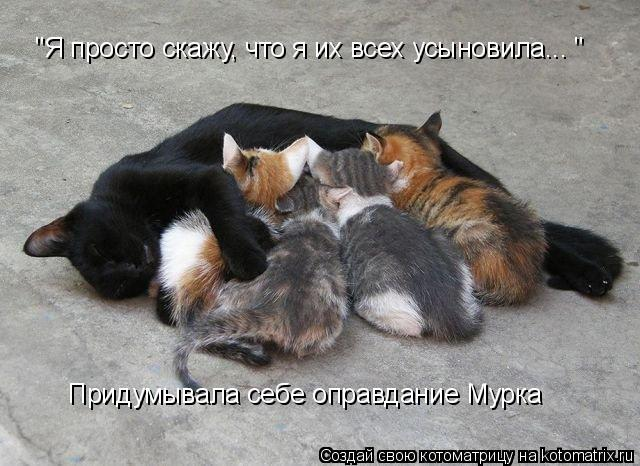 http://kotomatrix.ru/images/lolz/2009/09/24/364501.jpg