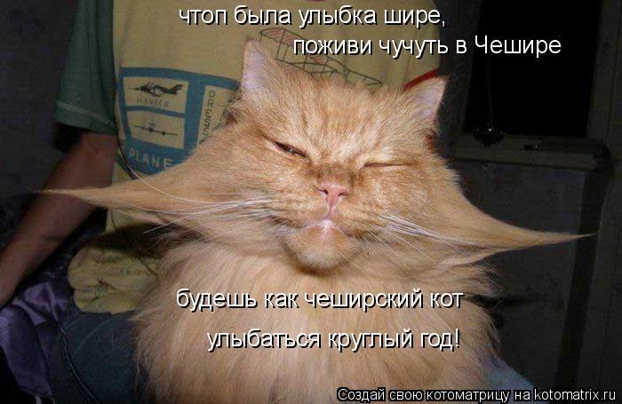 Котоматрица: чтоп была улыбка шире, поживи чучуть в Чешире будешь как чеширский кот улыбаться круглый год!