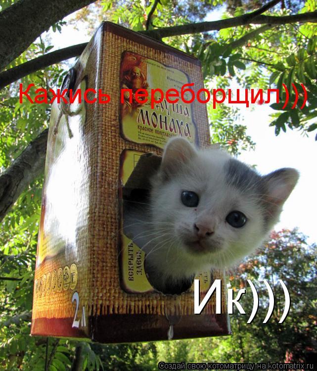 Котоматрица: Ик))) Кажись переборщил)))