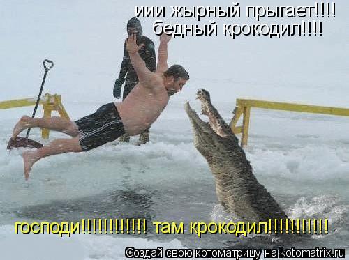 Котоматрица: иии жырный прыгает!!!! господи!!!!!!!!!!!! там крокодил!!!!!!!!!!! бедный крокодил!!!!