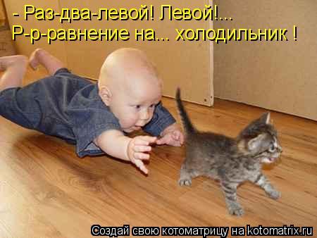 Котоматрица: - Раз-два-левой! Левой!... Р-р-равнение на... холодильник !
