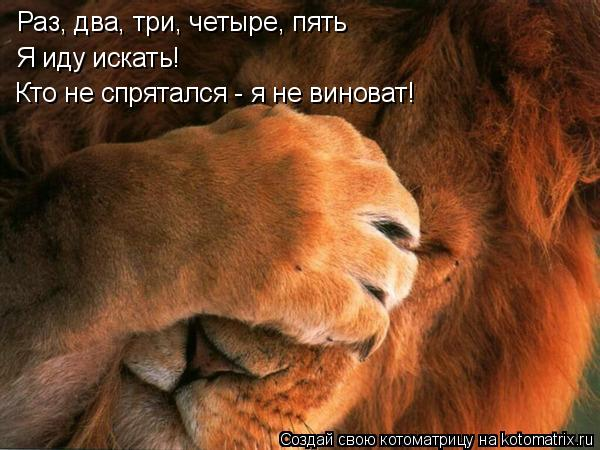 Котоматрица: Я иду искать! Раз, два, три, четыре, пять Кто не спрятался - я не виноват!