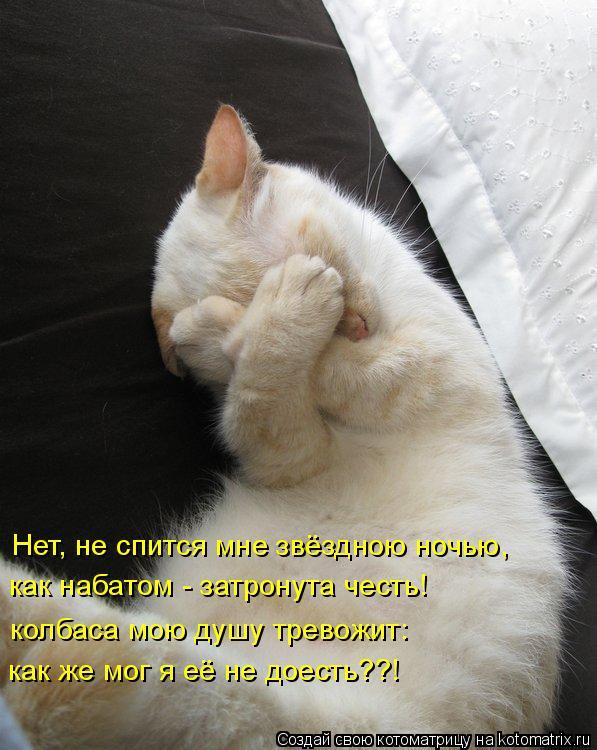 Котоматрица: Нет, не спится мне звёздною ночью, как набатом - затронута честь! колбаса мою душу тревожит: как же мог я её не доесть??!