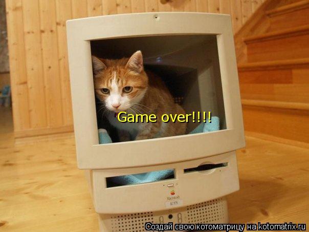 Котоматрица: Game over!!!!