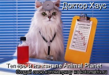 Котоматрица: Доктор Хауc Теперь и на канале Animal Planet