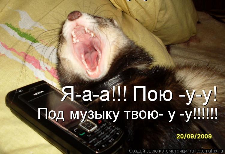 Котоматрица: Я-а-а!!! Пою -у-у!  Я-а-а!!! Пою -у-у!  Под музыку твою- у -у!!!!!!