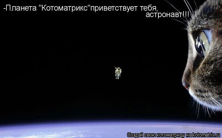 "Котоматрица: -Планета ""Котоматрикс""приветствует тебя, астронавт!!!"
