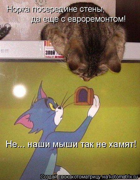 Котоматрица: Норка посередине стены,  да еще с евроремонтом!  Не... наши мыши так не хамят!