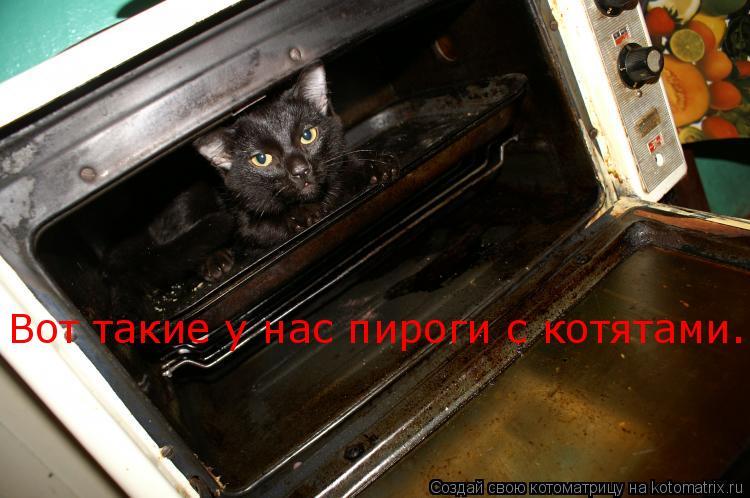 Котоматрица: Вот такие у нас пироги с котятами...