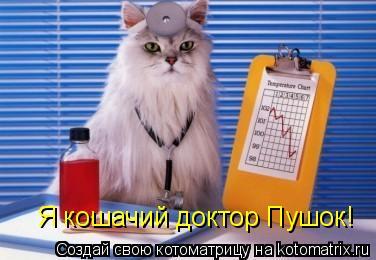 Котоматрица: Я кошачий доктор Пушок!