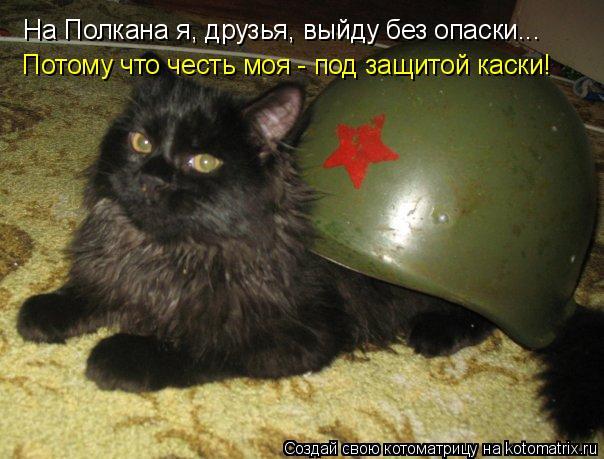 Котоматрица: На Полкана я, друзья, выйду без опаски... Потому что честь моя - под защитой каски!