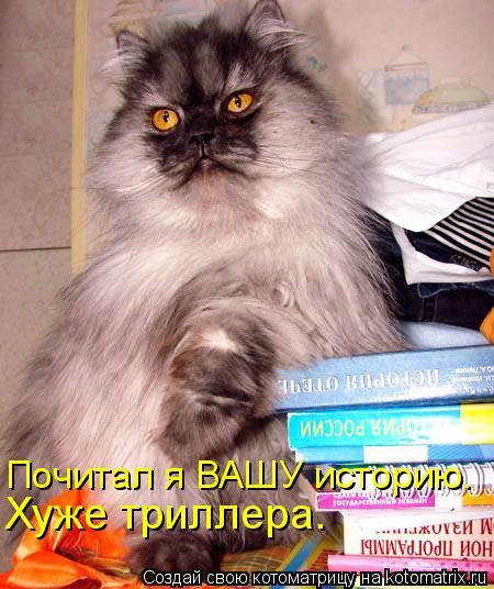 Котоматрица: Почитал я ВАШУ историю. Хуже триллера.