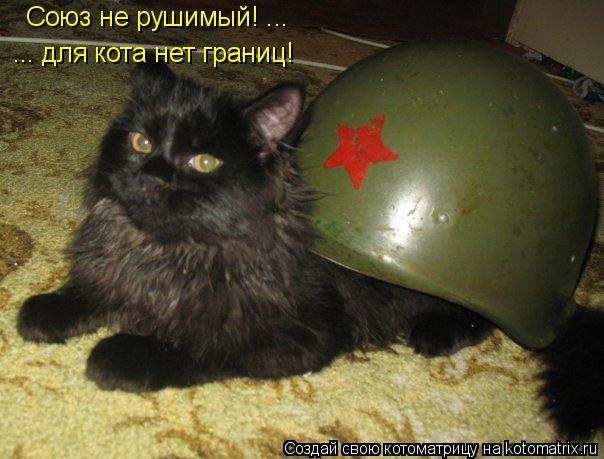 Котоматрица: ... для кота нет границ! Союз не рушимый! ...