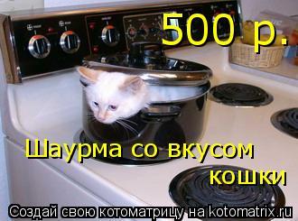 Котоматрица: Шаурма со вкусом кошки 500 р.