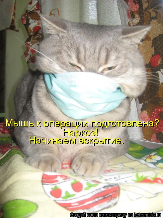 Котоматрица: Мышь к операции подготовлена? Наркоз! Начинаем вскрытие.