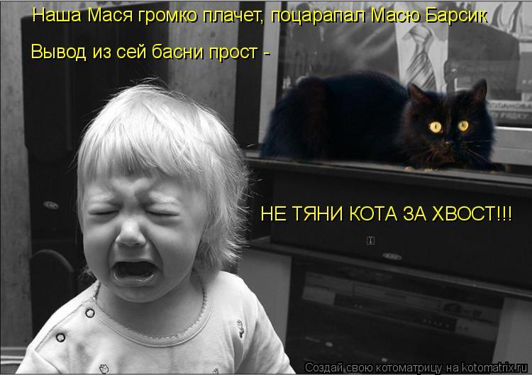 Котоматрица: Наша Мася громко плачет, поцарапал Масю Барсик Вывод из сей басни прост -  НЕ ТЯНИ КОТА ЗА ХВОСТ!!!