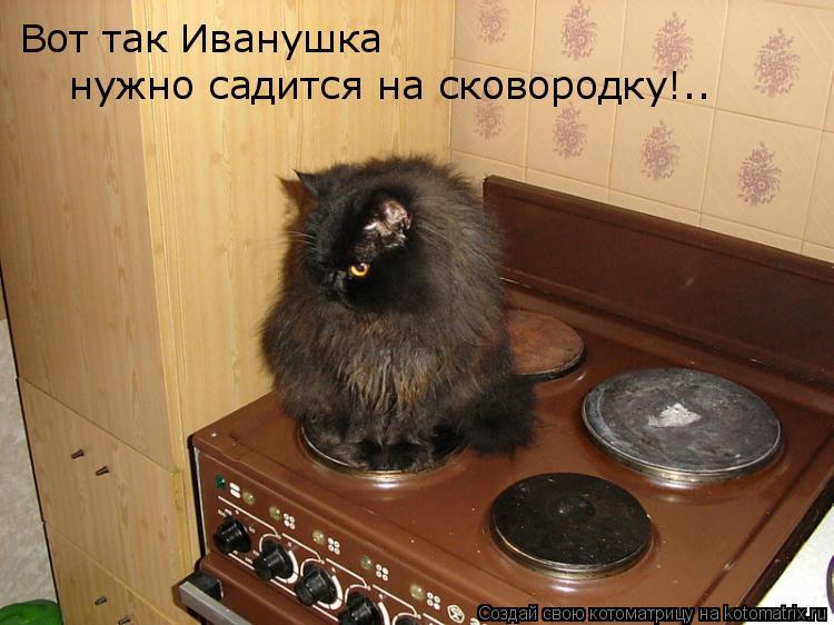 Котоматрица: Вот так Иванушка нужно садится на сковородку!..