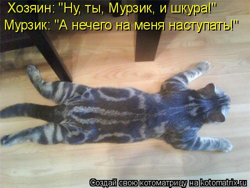 """Котоматрица: Хозяин: """"Ну, ты, Мурзик, и шкура!"""" Мурзик: """"А нечего на меня наступать!"""""""