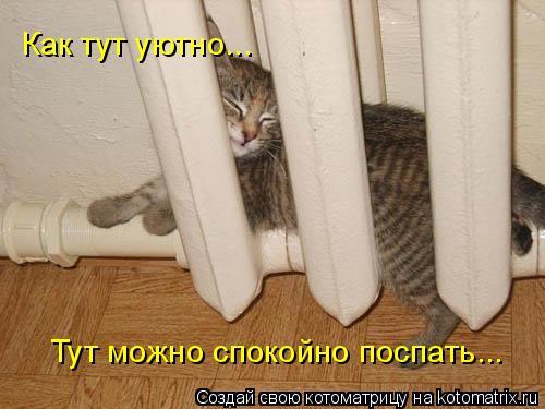 Котоматрица: Тут можно спокойно поспать... Как тут уютно...