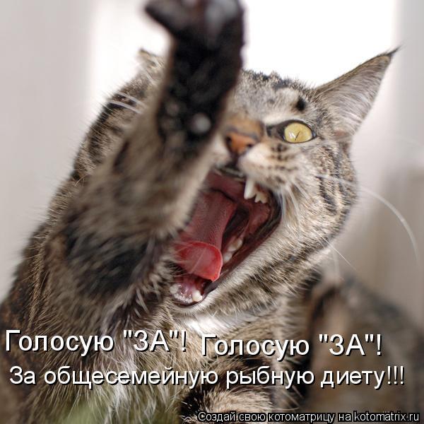 "Котоматрица: Голосую ""ЗА""! Голосую ""ЗА""! За общесемейную рыбную диету!!!"
