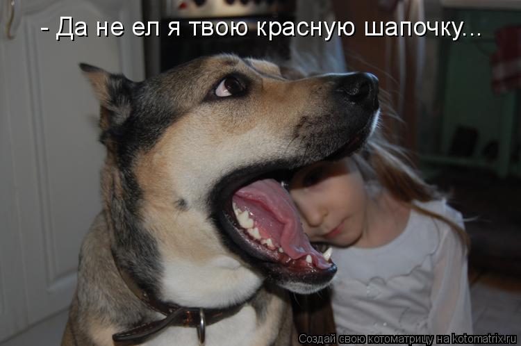 Котоматрица: - Да не ел я твою красную шапочку...
