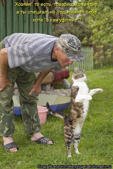 """Котоматрица: Хозяин, то есть, товарищ командир,  а ты специально подыскивал себе кота """"в камуфляже""""?"""