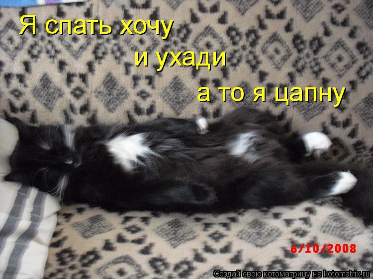 Котоматрица: Я спать хочу и ухади а то я цапну