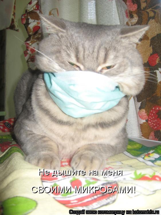 Котоматрица: Не дышите на меня СВОИМИ МИКРОБАМИ!