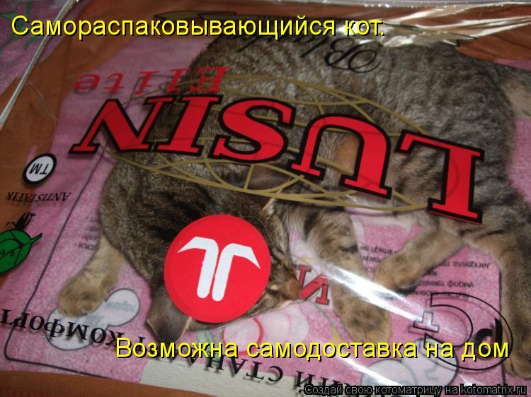 Котоматрица: Самораспаковывающийся кот. Возможна самодоставка на дом