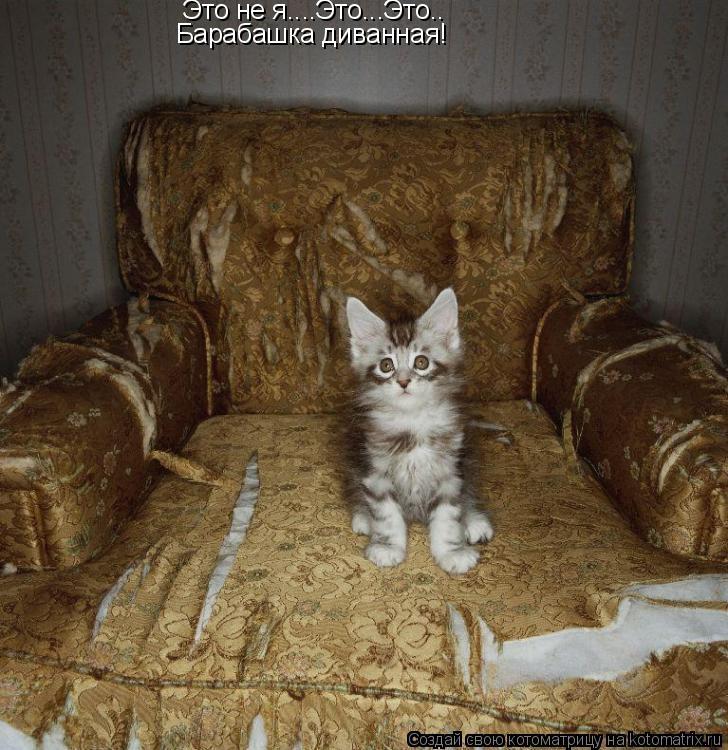 Котоматрица: Это не я....Это...Это.. Барабашка диванная!