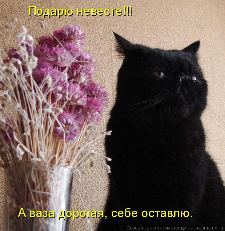Котоматрица: Подарю невесте!!! А ваза дорогая, себе оставлю.