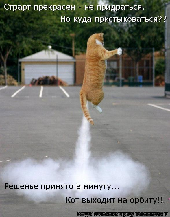 Котоматрица: Страрт прекрасен - не придраться. Но куда пристыковаться?? Решенье принято в минуту... Кот выходит на орбиту!!