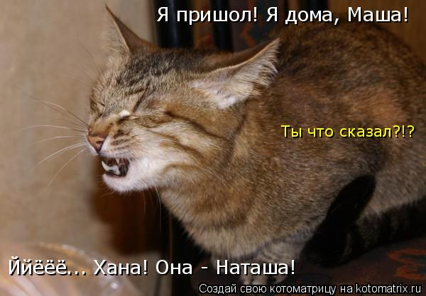 Котоматрица: Я пришол! Я дома, Маша! Ййёёё... Хана! Она - Наташа! Ты что сказал?!?