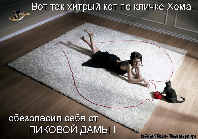 Котоматрица: Вот так хитрый кот по кличке Хома обезопасил себя от  ПИКОВОЙ ДАМЫ !
