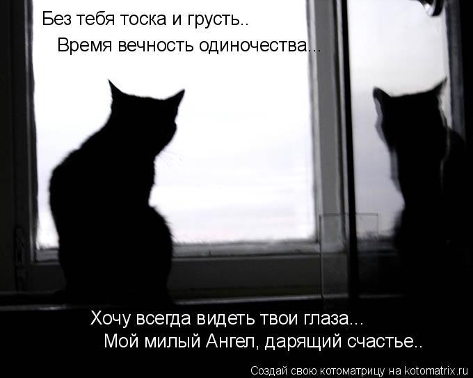 Котоматрица: Без тебя тоска и грусть..  Время вечность одиночества... Хочу всегда видеть твои глаза...  Мой милый Ангел, дарящий счастье..