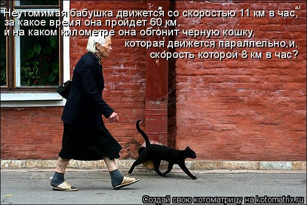 Котоматрица: Неутомимая бабушка движется со скоростью 11 км в час, за какое время она пройдет 60 км,  и на каком километре она обгонит черную кошку, которая