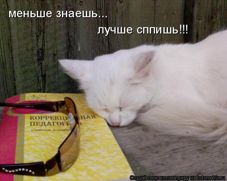 Котоматрица: меньше знаешь... меньше знаешь... лучше сппишь!!!