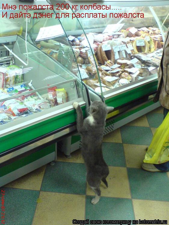 Котоматрица: Мнэ пожалста 200 кг колбасы..... И дайтэ дэнег для расплаты пожалста