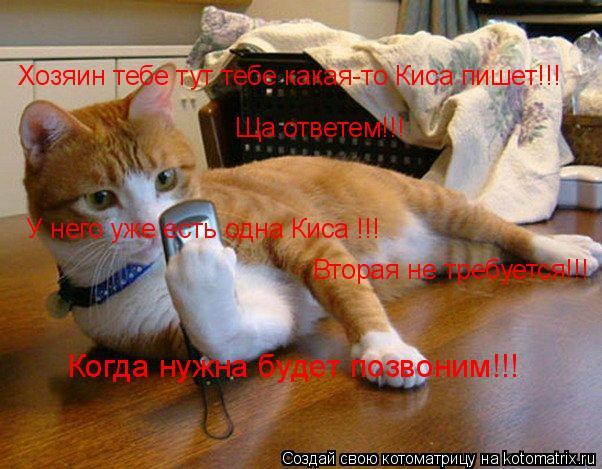 Котоматрица: Хозяин тебе тут тебе какая-то Киса пишет!!! Ща ответем!!! У него уже есть одна Киса !!! Вторая не требуется!!! Когда нужна будет позвоним!!!