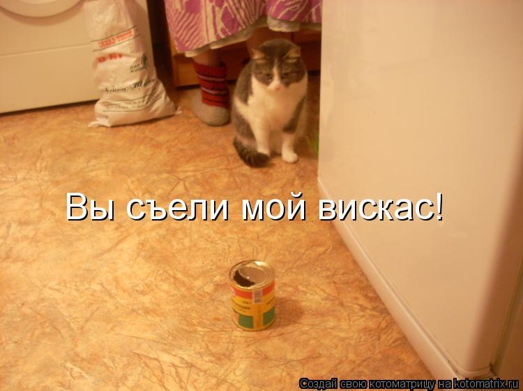 Котоматрица: Вы съели мой вискас!