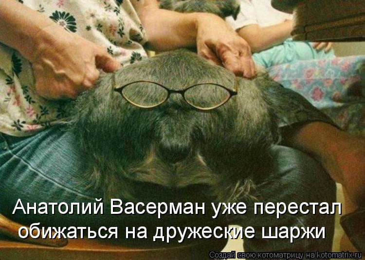 Котоматрица: Анатолий Васерман уже перестал  обижаться на дружеские шаржи