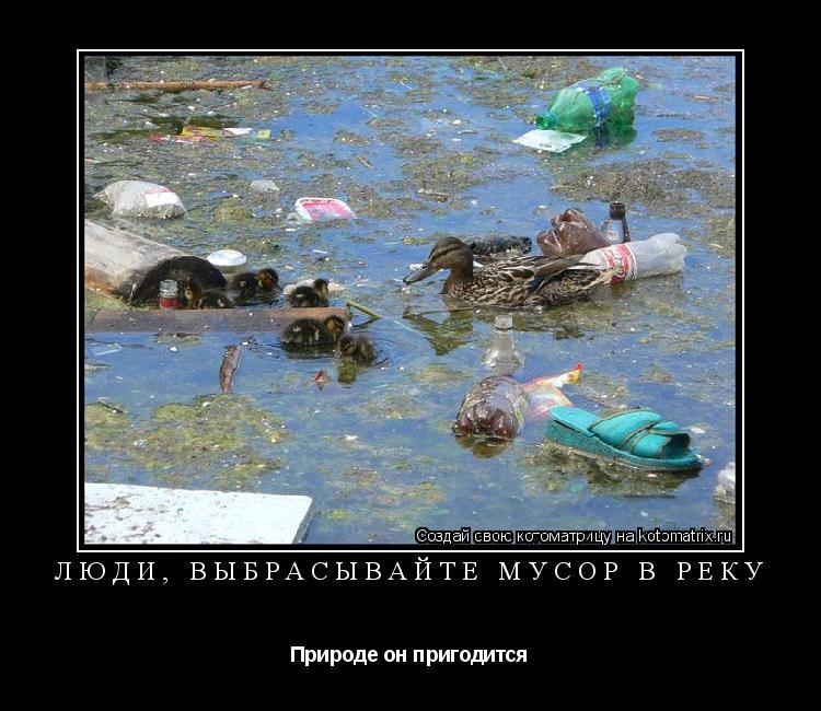 Котоматрица: Люди, выбрасывайте мусор в реку Природе он пригодится