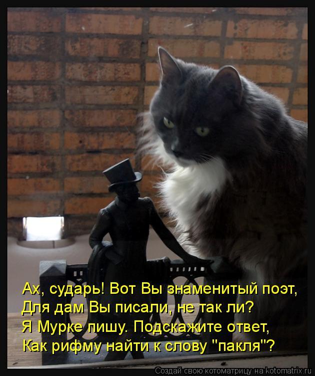 """Котоматрица: Ах, сударь! Вот Вы знаменитый поэт, Для дам Вы писали, не так ли? Я Мурке пишу. Подскажите ответ, Как рифму найти к слову """"пакля""""?"""