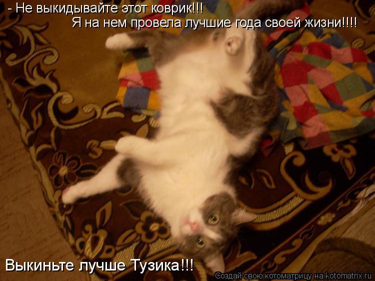 Котоматрица: - Не выкидывайте этот коврик!!! Я на нем провела лучшие года своей жизни!!!! Выкиньте лучше Тузика!!!